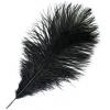 "Ostrich Drab Feathers 11-13"" Premium Quality Black"